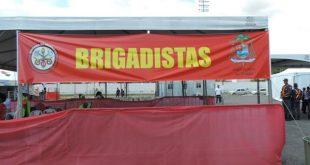 Curso de Brigadistas 2017 (Vinde e Vede)