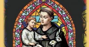 Festa de Santo Antônio – Paróquia Nsa. Sra. de Guadalupe